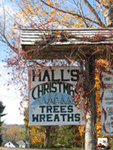 Hall's Christmas Tree Farm